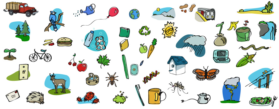 EcoKids illustrations